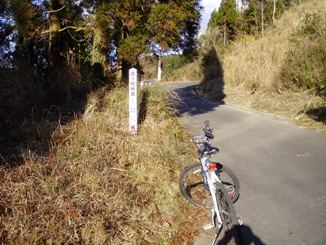 Forestry_road_of_mt_kite