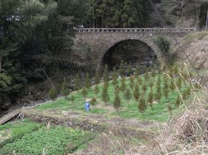 Otani_bridge