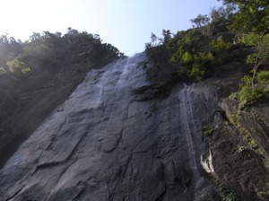 Mukabaki_fall2
