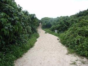 Sand_road
