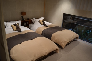 Sleeping_room