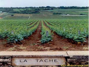 La_tache