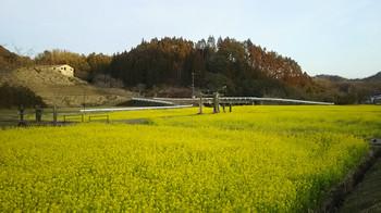 101_shrine