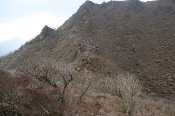 8rock-ridge